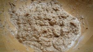 porridge bread starter