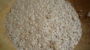 porridge bread starter 2